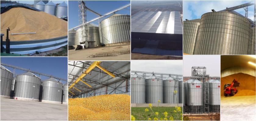 Tahıl Tanelerinin Depolanmasında Meydana Gelen Hasarlar