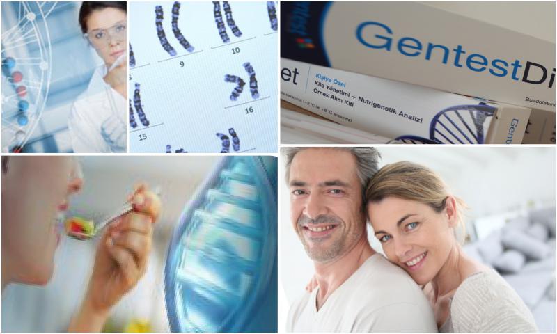 Gentest Beslenme Analizleri Nasıl Yapılır?