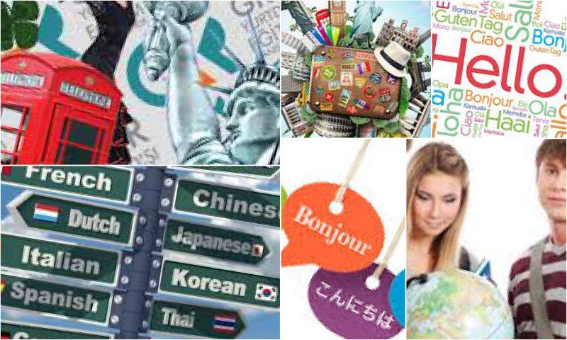 Yurtdışı Dil Eğitimi Programları